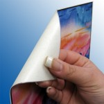 Removable Adhesives